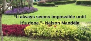 nelson mandela motivational quotes